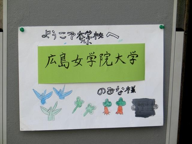 本川見学2.jpg