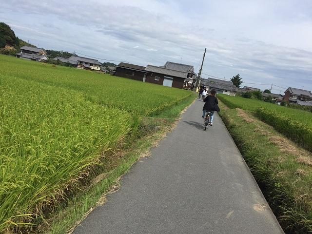 9月11日 飛鳥寺付近-r.jpg