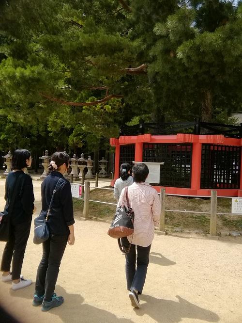 9月9日 高野山 壇上伽藍 三鈷の松.jpg