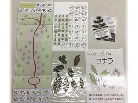 seikatsu81_1.jpg