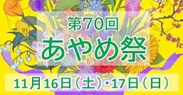 11/16(土)・17(日) あやめ祭(大学祭)開催!
